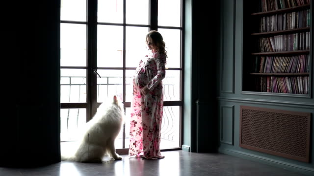 Pregnant woman and her dog standing near the window video