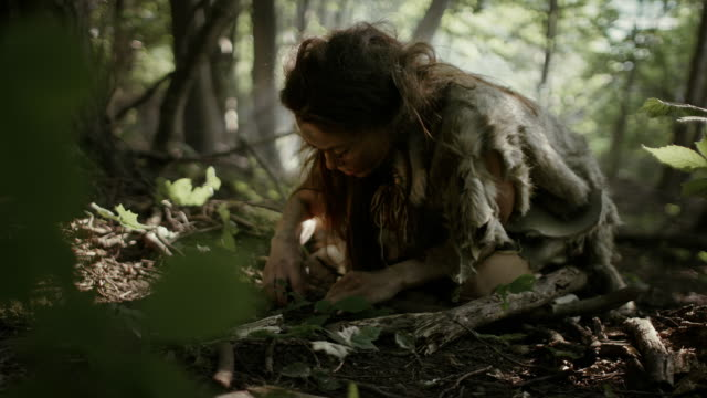 vídeos de stock e filmes b-roll de prehistoric cave woman hunter-gatherer searches for nuts and berries in the forest. primitive neanderthal woman finding food in the sunny forest - colher atividade agrícola