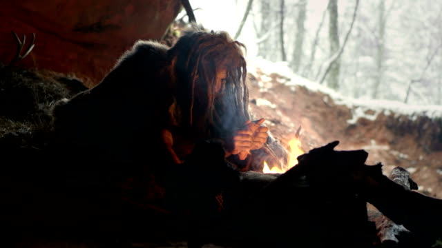 prehistoric caveman in his cave - family trees stock videos and b-roll footage