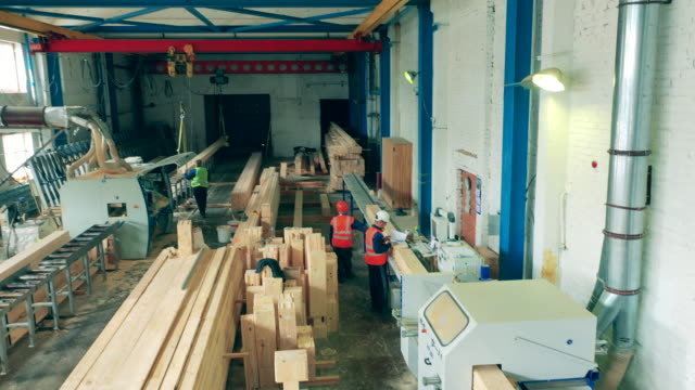 Premises of a woodworking plant with employees and timber video