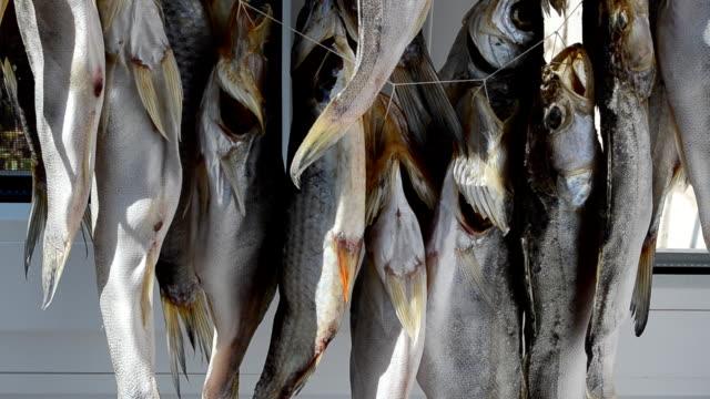 Preparation of fish. video