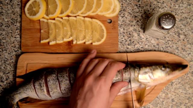 beredning av fisk med citron i olja. - djurarm bildbanksvideor och videomaterial från bakom kulisserna