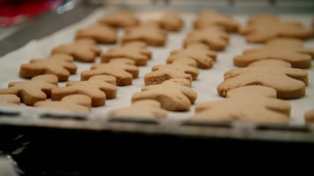förbereda pepparkakor i inhemska kök - pepparkaka bildbanksvideor och videomaterial från bakom kulisserna