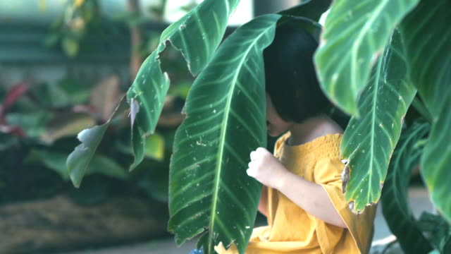 stockvideo's en b-roll-footage met voorschoolse leeftijd: verkennen tuin - fresh start yellow
