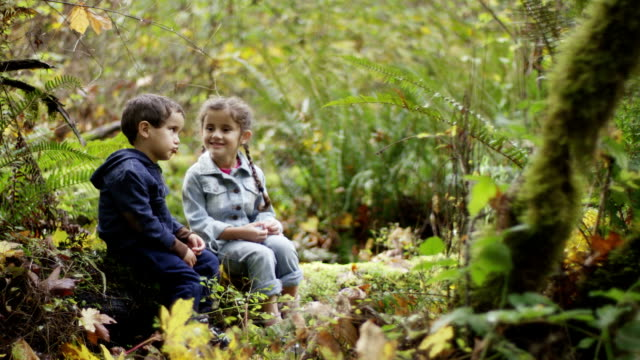 Preschoolers Exploring the Woods video