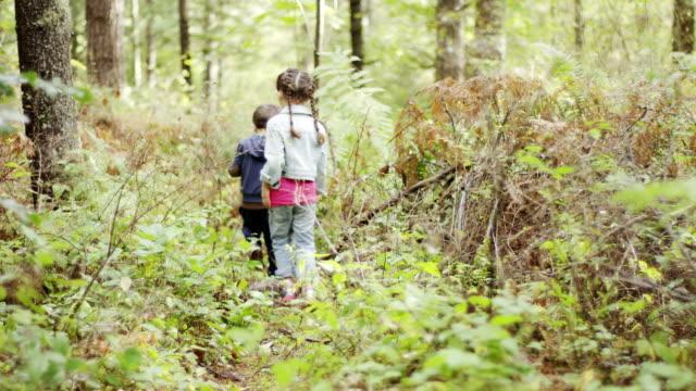 preschoolers exploring the woods - förskoleelev bildbanksvideor och videomaterial från bakom kulisserna