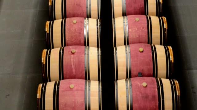 Prestigious wine cellar with barrels video