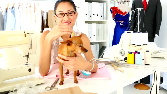 Pretty fashion designer petting her chihuahua video