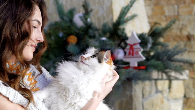 Pretty girl holding a fat cat and caress it. Slowly video