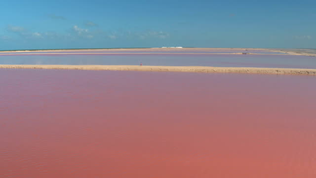 AERIAL: Pretty girl strolling down the sandy dike watching pink lakes in salinas AERIAL, CLOSE UP: Tourist girl in pink cardigan walking down the sandy levee watching gorgeous pink lagoons and salt mountains. Woman enjoying summer vacations viewing amazing pink sea water salt pans salt flat stock videos & royalty-free footage