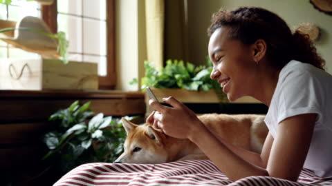 vídeos y material grabado en eventos de stock de estudiante chica guapa está utilizando smartphone pantalla táctil y riendo acostado en cama en casa con lindo perro del animal doméstico, animal goza de amor y cuidado. - mascota