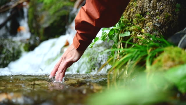 A pretty girl traveler in a cap sits on the bank of a mountain stream in a coniferous forest