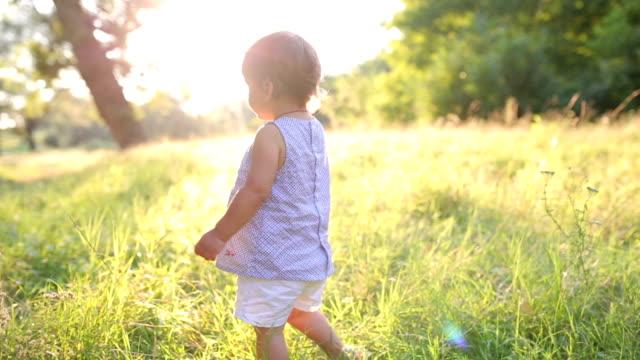 vídeos de stock, filmes e b-roll de uma menina bonita em um prado. - criança pequena