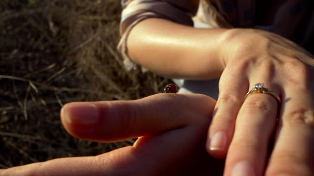 Pretty woman holding ladybug, close-up portrait. Beautiful beetle crawls along her arm and fly away. Slowmotion video