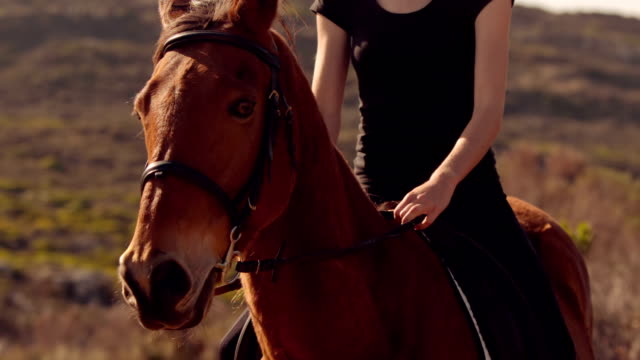 Pretty woman riding on a horse Pretty woman riding on a horse in slow-motion paddock stock videos & royalty-free footage