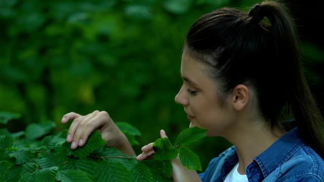 vacker kvinna strök trädet blad, visar hjärta tecken med fingrar, kärlek natur - recycling heart bildbanksvideor och videomaterial från bakom kulisserna