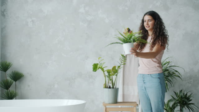 Pretty young lady spraying house plants in bathroom using spray bottle Pretty young lady housewife is spraying house plants in bathroom using spray bottle smiling enjoying floristry. People, housework and lifestyle concept. watering stock videos & royalty-free footage