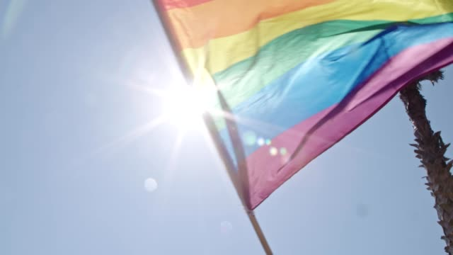 Pride LGBT rainbow flag waving in slow motion during a pride parade Pride LGBT rainbow flag waving in slow motion during a pride parade free stock without watermark stock videos & royalty-free footage