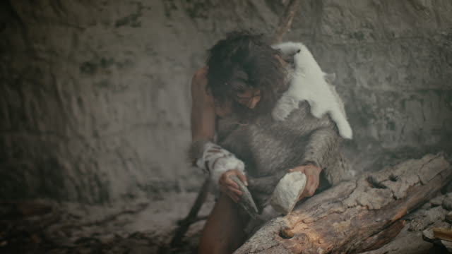 vídeos de stock e filmes b-roll de primeval caveman wearing animal skin holds sharp stone and makes first primitive tool for hunting animal prey, or to handle hides. neanderthal using handax. dawn of human civilization - evolução