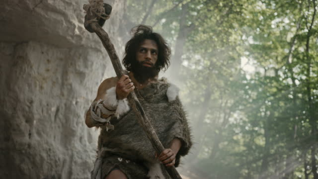 vídeos de stock e filmes b-roll de primeval caveman wearing animal skin holds stone tipped hammer comes out of the cave and looks around prehistoric landscape, ready to hunt animal prey. neanderthal going hunting into the jungle - evolução