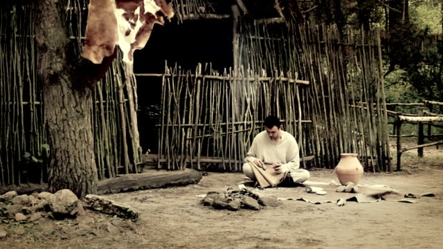 Primitive man, age of the neolithic. video