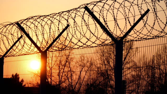 prison barbed wire fence at sunset. bright sun and trees silhouette freedom 4k - prigione video stock e b–roll