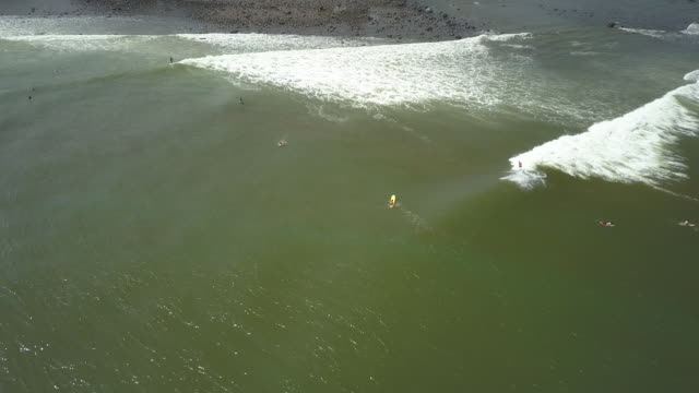 AERIAL: Pro surfer riding breaking swell wave in brown polluted water in Bali video