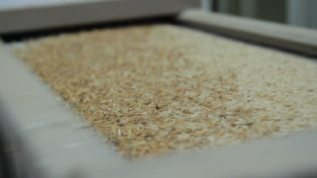 HD : Process of Rice Mill Industry HD : Process of Rice Mill Industry rice cereal plant stock videos & royalty-free footage