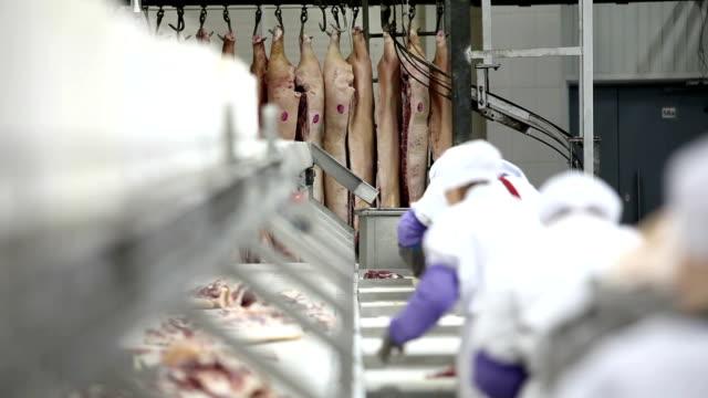 przetwarzanie produkcji mięsa. - mielona wołowina filmów i materiałów b-roll