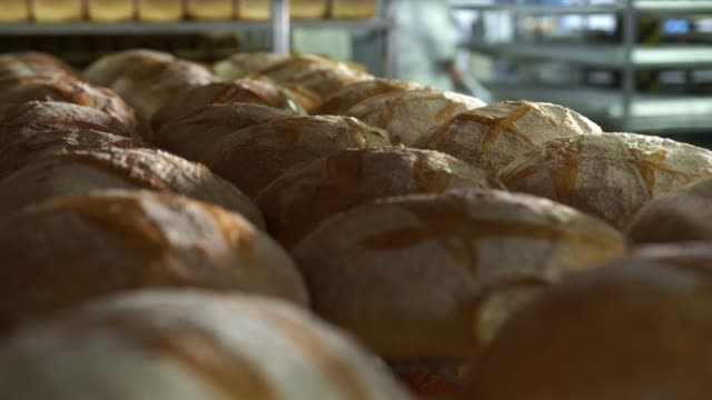 Production of bakery products close up. Freshly baked ruddy bread close up, lying on the shelves at the factory in the bakery. Lots of bread on the shelves in the bakery