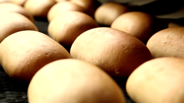 production of bread in a large factory 10 video