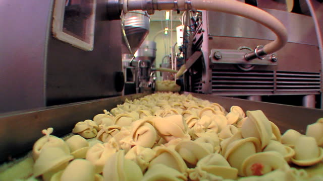 Production of ravioli Production of ravioli ravioli stock videos & royalty-free footage
