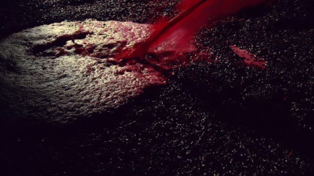 Production of red wine poured into wine vat with winemaker testing video
