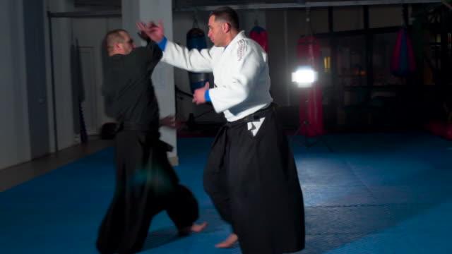 Professional aikido training
