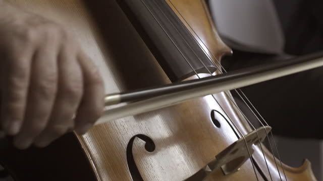 professional cellist playing on stage close up - classical architecture stock videos & royalty-free footage