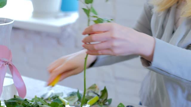 vídeos de stock e filmes b-roll de professional florist working with flowers at studio - molho arranjo