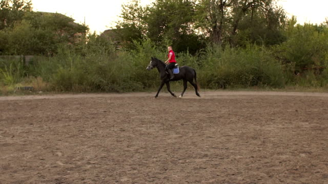 Professional girl rider galloping on a horse. video