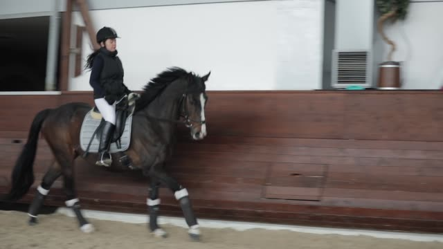 Professional horsewoman riding horse in a manege, running gallop video