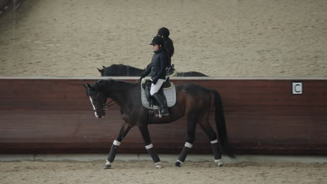 Professional horsewoman riding horse in a manege, running trotting video