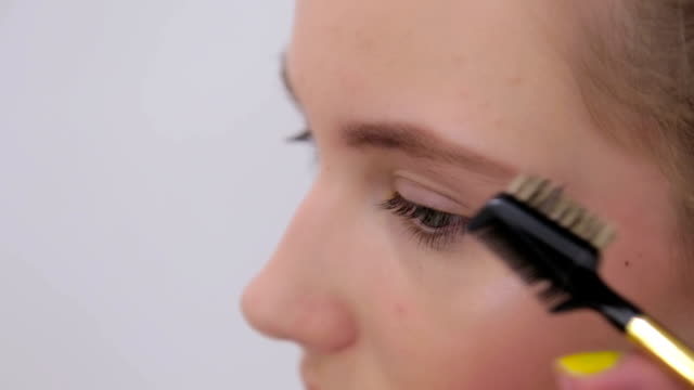 Professional make-up artist combing eyebrows of client video