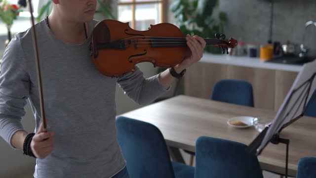 Professional male violinist rehearsing music piece