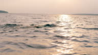 istock Professional swimmer is crossing the sea waters 1272412566