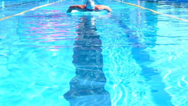 Professional swimmer is swimming butterfly in a pool. Butterfly training. ビデオ