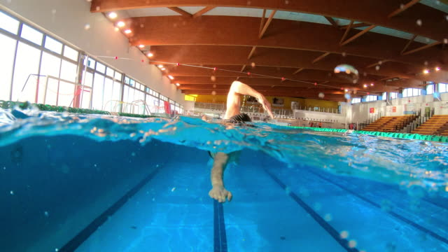 professional swimmer with googles trains with effort and dedication to win the race by swimming in a freestyle pool. - triatleta video stock e b–roll
