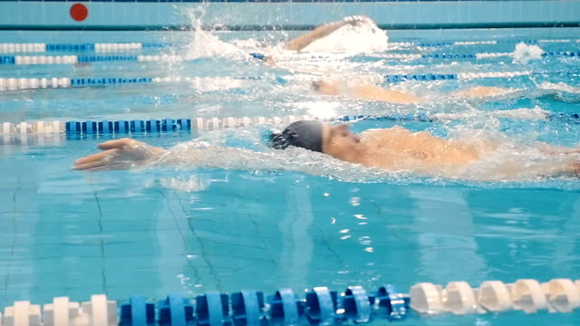 Professional swimming competition in the pool video