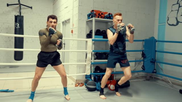 professionelles training von zwei boxern am ring mit hanteln. - sportchampion stock-videos und b-roll-filmmaterial