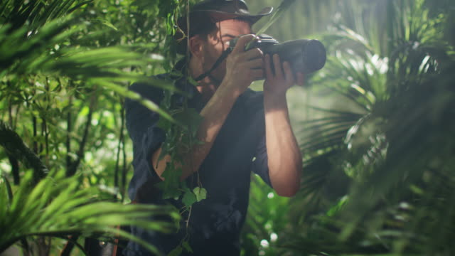 Professional Wildlife Photographer Taking Pictures in Jungle Forest - vídeo