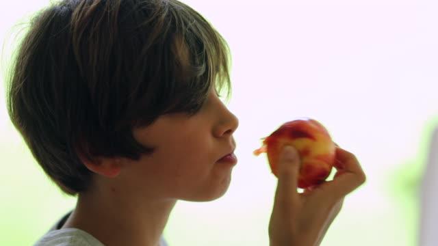 profile of child boy eating eating peach fruit - pesche bambino video stock e b–roll