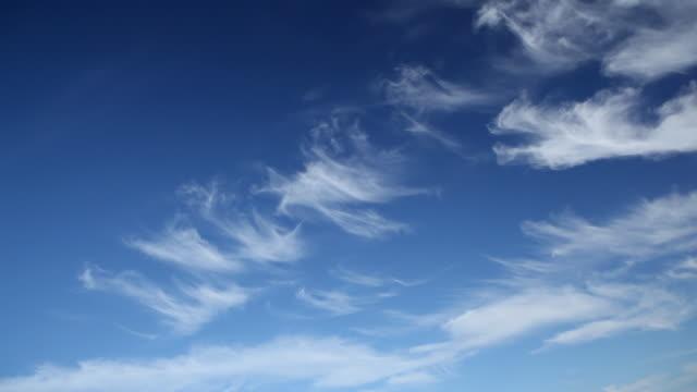 vídeos de stock, filmes e b-roll de hd hélice avião voar acima da cabeça - plano médio