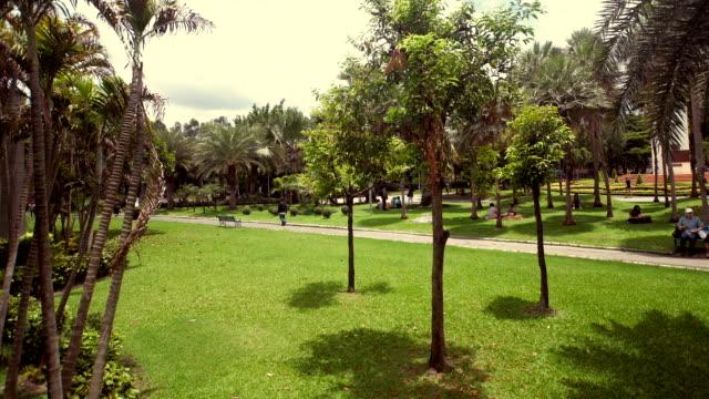 public park video